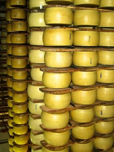 Flavor of Italy Day Tours from Rome - Parmigiano reggiano